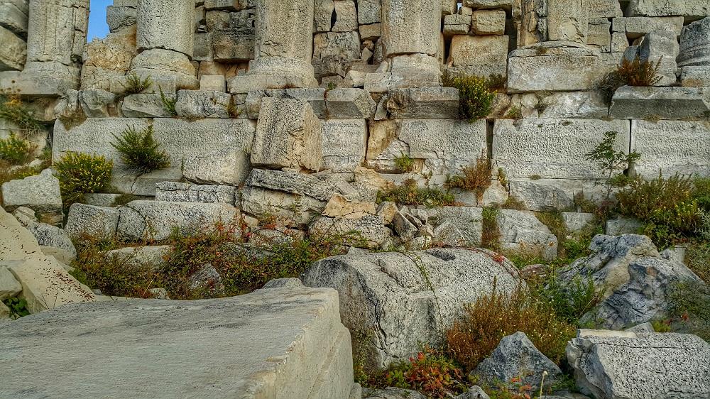 hardine temple