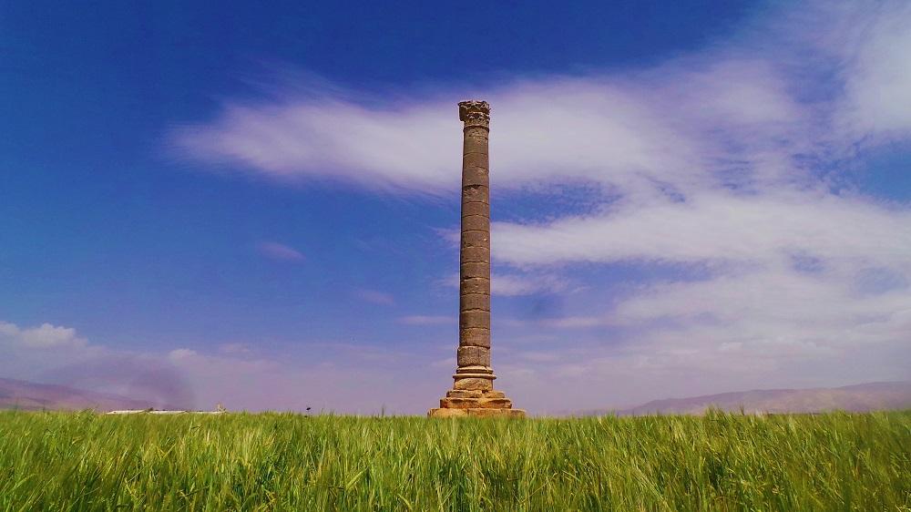 Iaat column